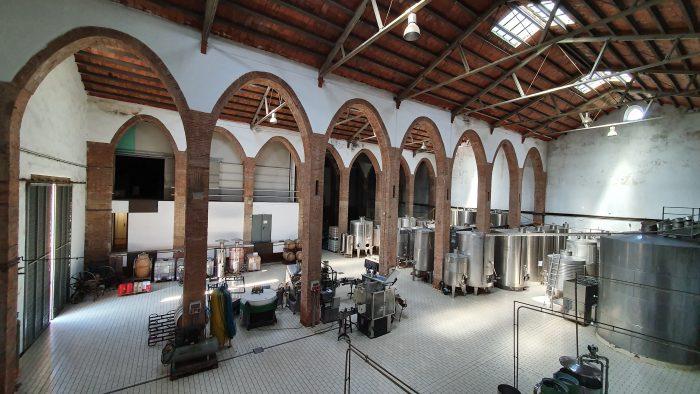 Alella Vinicola factory