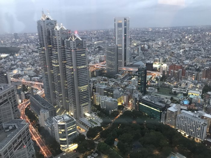 View from Tokyo Metropolitan Government Building