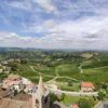 The 7 best Langhe Wineries
